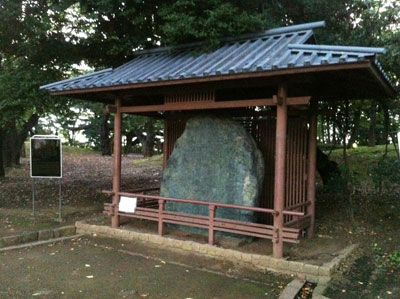 荒川_飛鳥山公園20120729_11