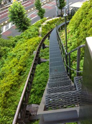 荒川_飛鳥山公園20120729_13