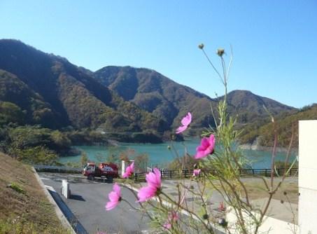 *寂しい秋のダム湖*