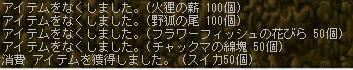 Maple100809_220318.jpg