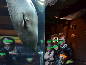 20131124旭山動物園10