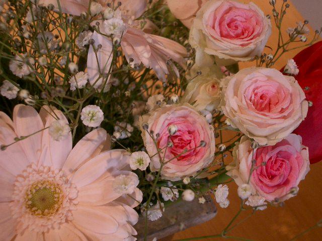 春色のお花