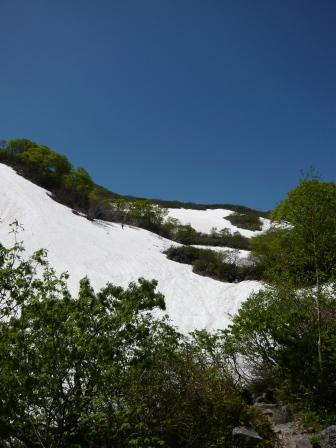 100606雪渓