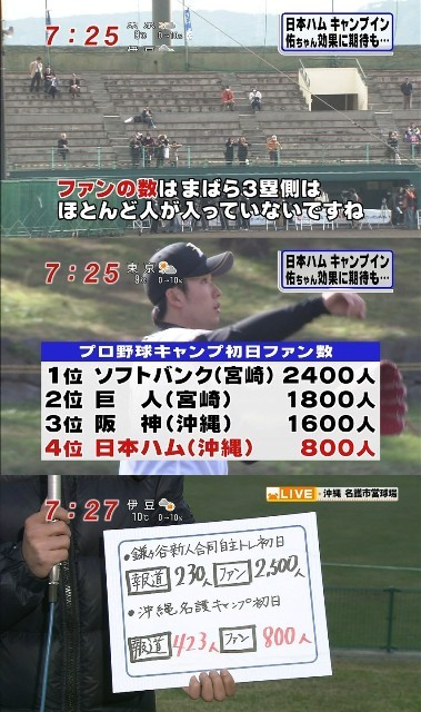 薬球 プロ野球の視聴率と情報