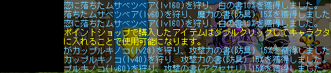 20120311 (13)