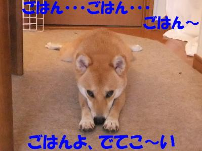 1b20110807 006