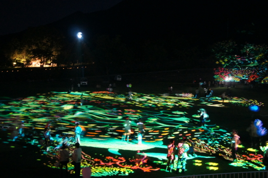 峡南夏祭り 外観
