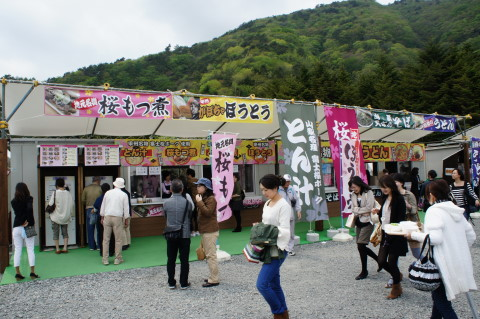 富士芝桜 店