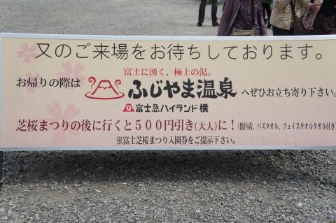 富士芝桜 割引