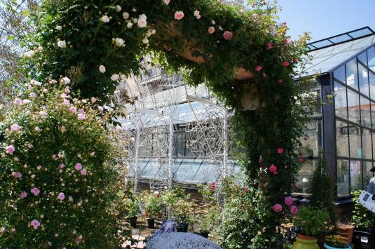 バラの花 ハイジの村 門