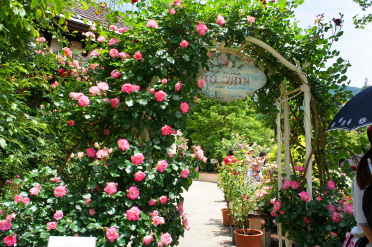 バラ オルゴールの森 門
