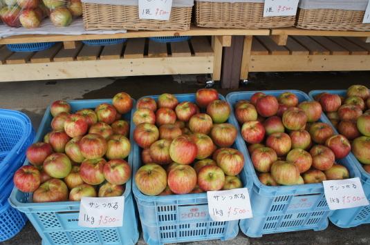 ひまわり畑 リンゴ園 りんご