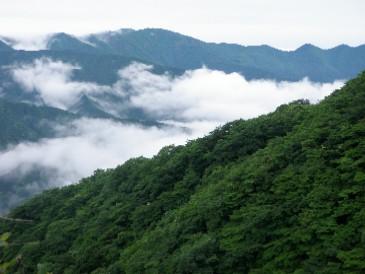 大山から表尾根20100620