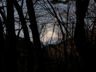 イタツミ尾根からの富士101223