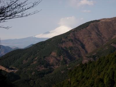 イタツミ尾根からの富士②101223