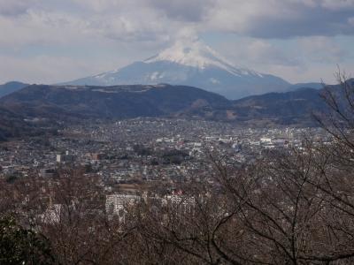 権現山から富士山110130