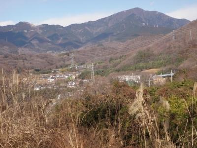 弘法山から大山110130
