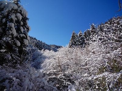 信州のような雪化粧の風景ですが、南関東の神奈川県です(笑)