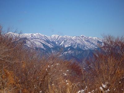 丹沢の山々も雪化粧していました