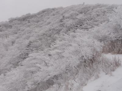 イタツミ尾根から大山方面110212