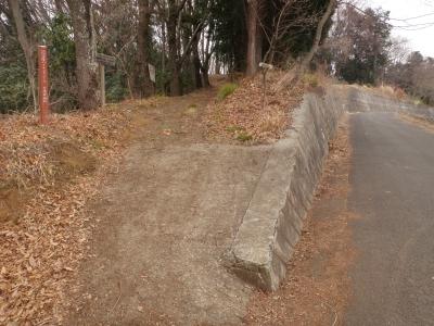 須賀神社へのハイキング路110214