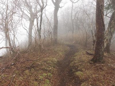 120422大室山への道