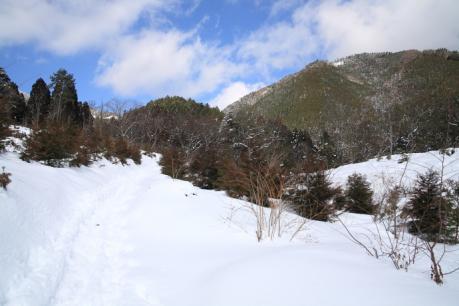 登山道下部