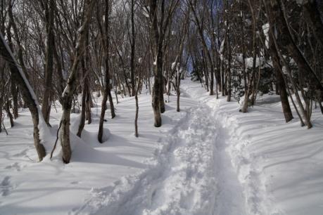 大神岩上部の登山道