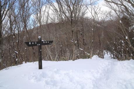 山頂まで1.1km