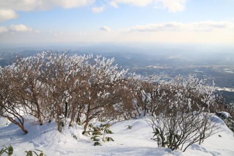 樹氷と展望