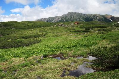 池塘と水晶岳