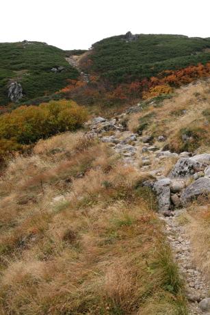 巻き道の登り坂