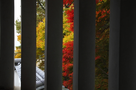 格子窓からの紅葉