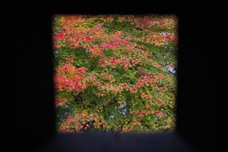 鉄砲窓からの紅葉