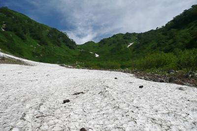 シシウドヶ原の雪渓