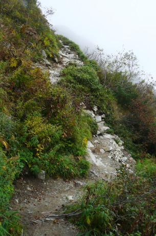 弓折乗越直下の登山道