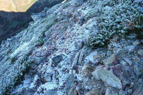 鷲羽岳中腹の初雪