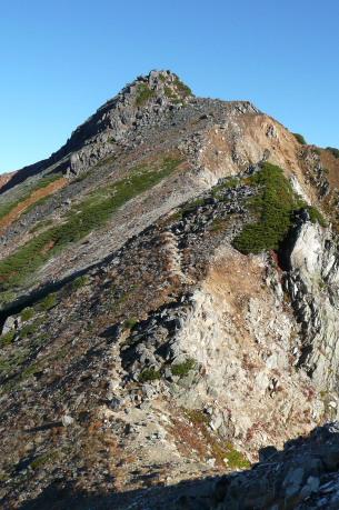 鞍部から見るワリモ岳