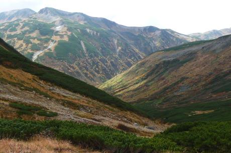 岩苔小谷から見た黒部源流部