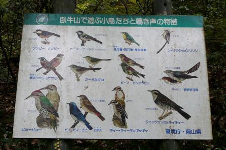 野鳥の説明板