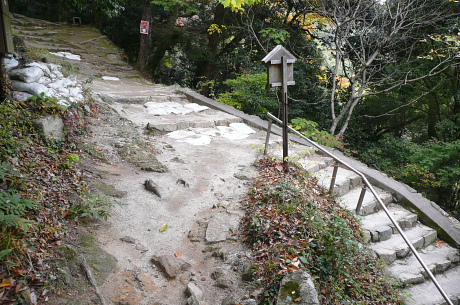 登山道合流地点