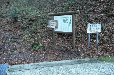 林道の下宝珠越登山口