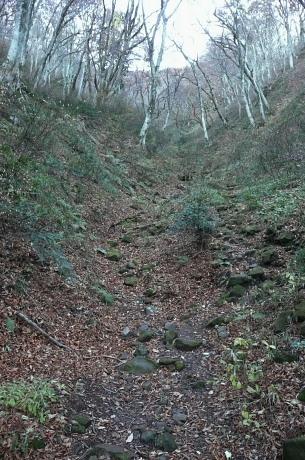 下宝珠越への登山道