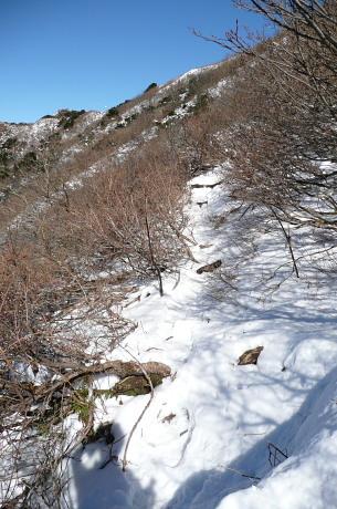 上宝珠越から上の登山道