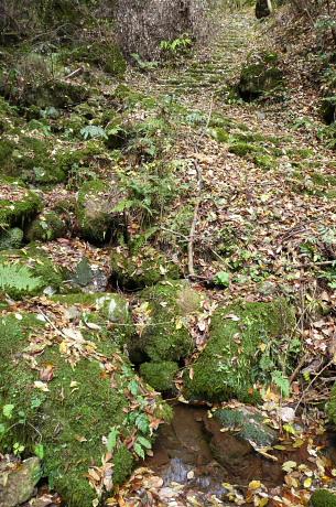 石段になった登山道