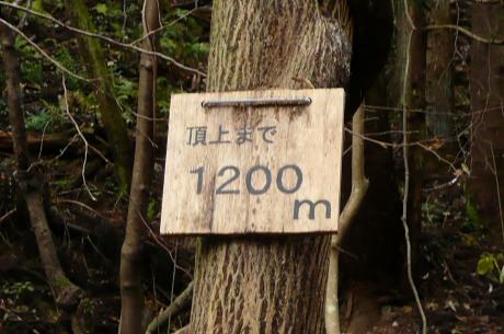 頂上まで1200mの看板