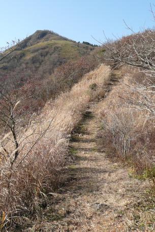 六合目上の登山道