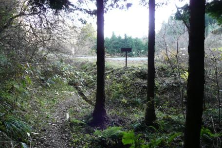 林道との合流点