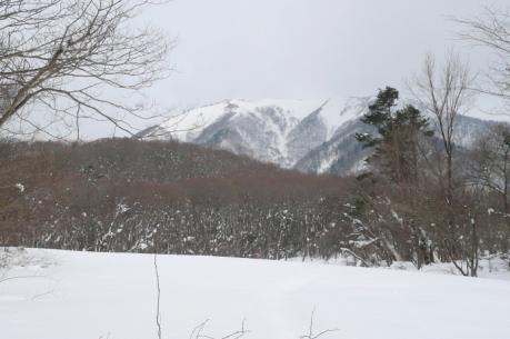 牧草地越しの中蒜山