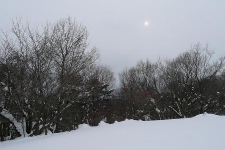 小雪舞う風景